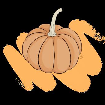 pumpkin-02